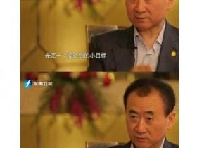 """王健林除了""""一个亿小目标"""",还说了什么?对话实录"""